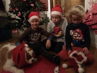 O jul med din glede (og litt vrede)